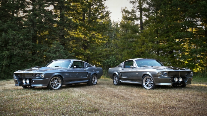 Ford Mustang GT500 Shelby Eleanor в лесу, фото